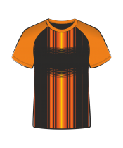 Футболка простая 206 реглан оранжевый