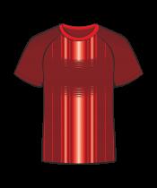Футболка простая 206 реглан красная